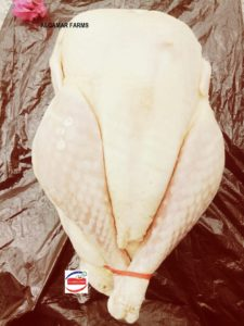 Fresh and Frozen Whole Turkey Raw